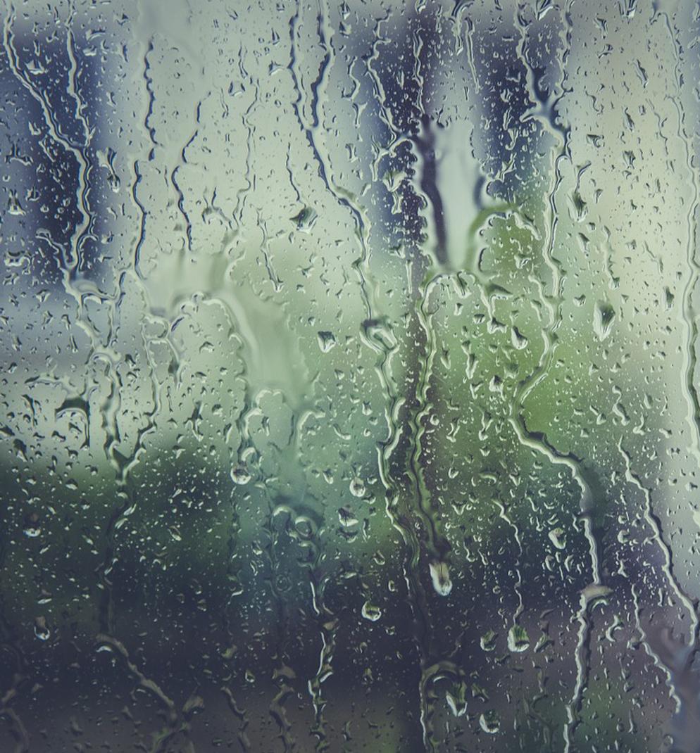 비오는날 가슴속까지 촉촉해지는